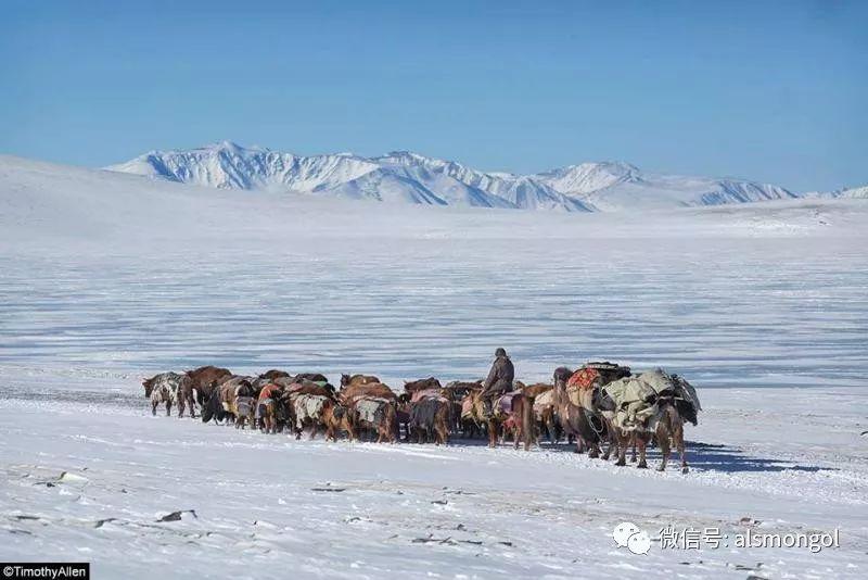 【摄影】蒙古冬季美景 第3张