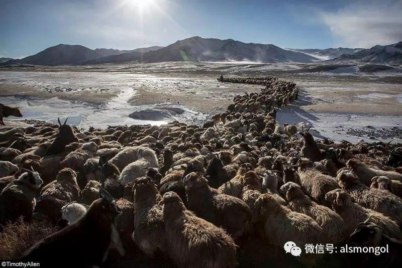 【摄影】蒙古冬季美景 第6张