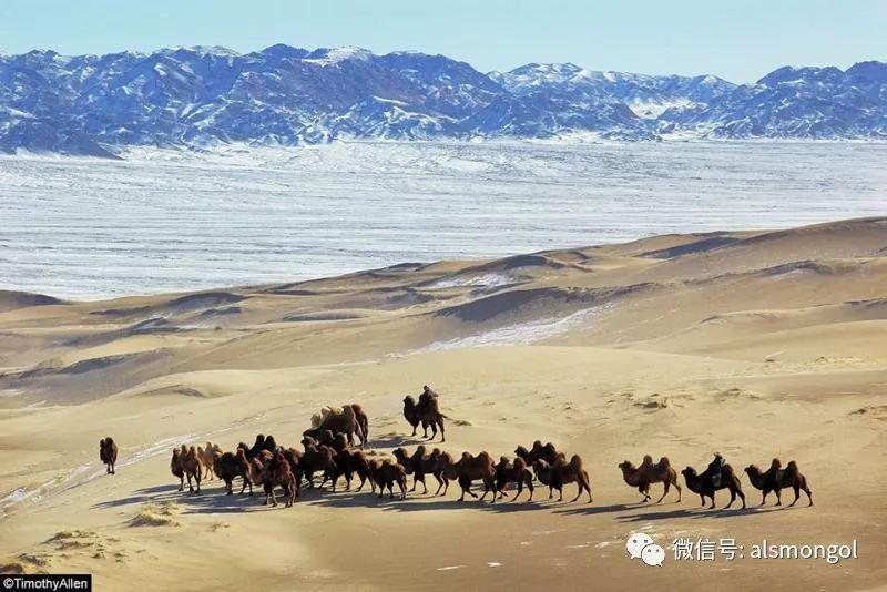 【摄影】蒙古冬季美景 第10张