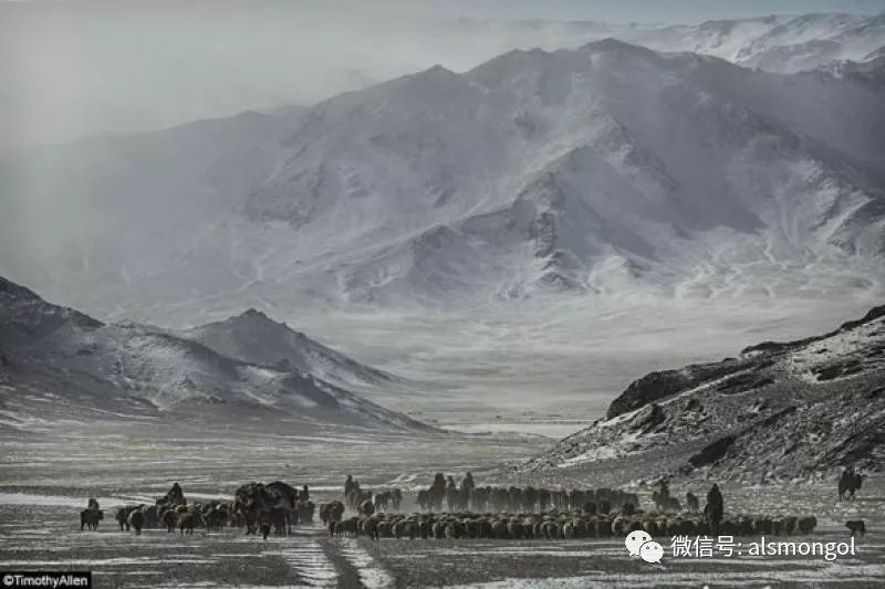 【摄影】蒙古冬季美景 第11张