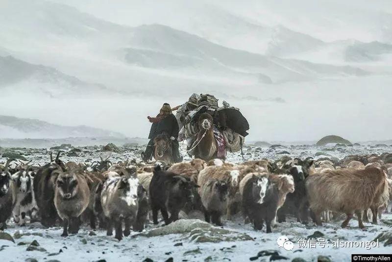 【摄影】蒙古冬季美景 第12张