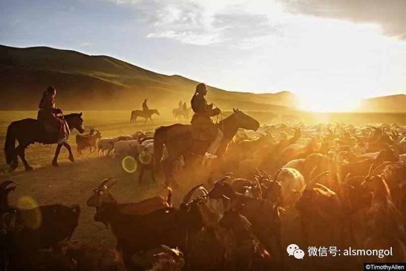 【摄影】蒙古冬季美景 第17张