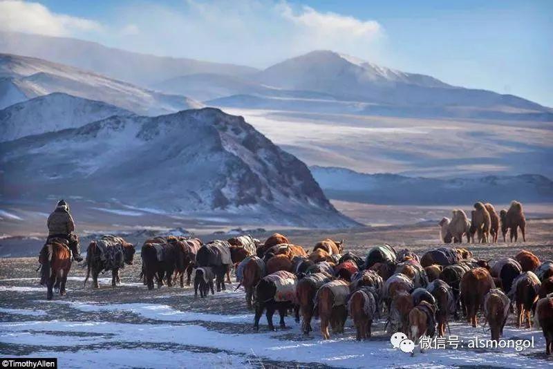 【摄影】蒙古冬季美景 第16张