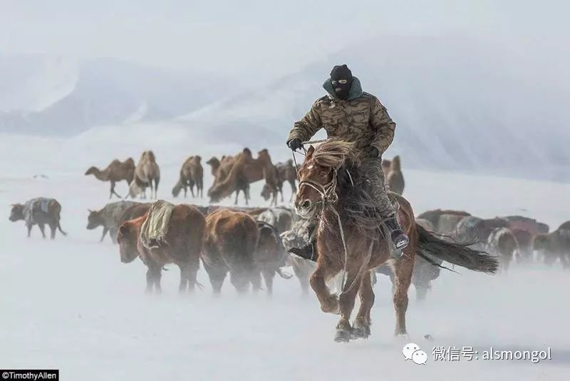 【摄影】蒙古冬季美景 第18张
