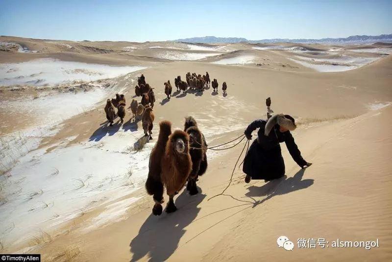 【摄影】蒙古冬季美景 第19张 【摄影】蒙古冬季美景 蒙古文化