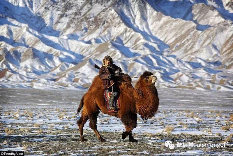 【摄影】蒙古冬季美景 第21张