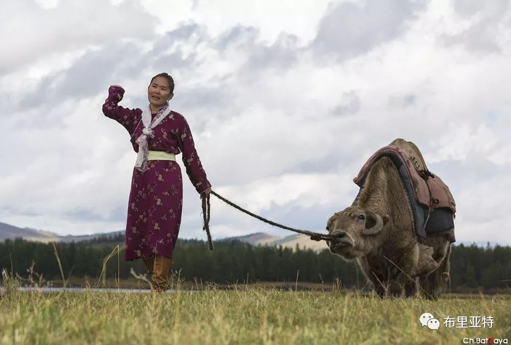 蒙古摄影师巴特扎亚摄影作品欣赏 第2张 蒙古摄影师巴特扎亚摄影作品欣赏 蒙古文化