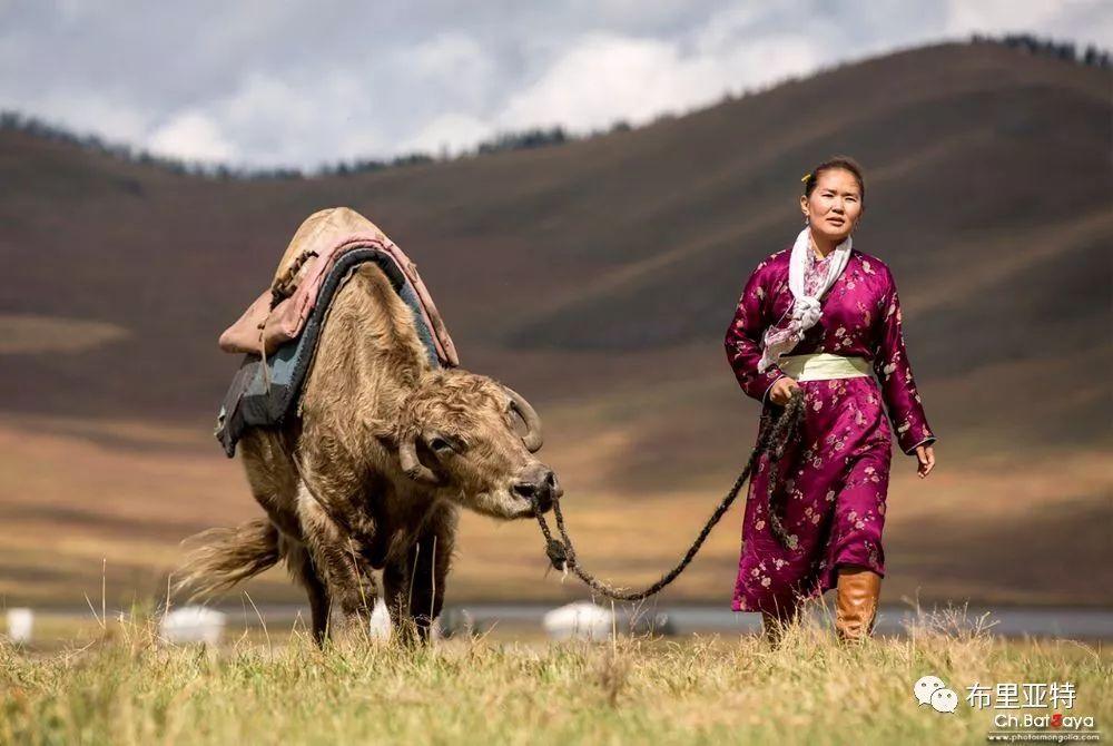 蒙古摄影师巴特扎亚摄影作品欣赏 第3张 蒙古摄影师巴特扎亚摄影作品欣赏 蒙古文化