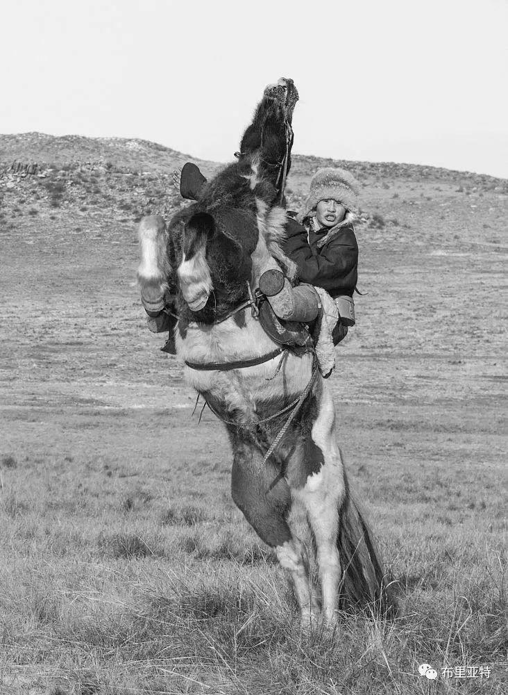 蒙古摄影师巴特扎亚摄影作品欣赏 第12张 蒙古摄影师巴特扎亚摄影作品欣赏 蒙古文化