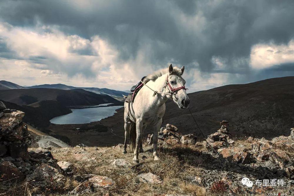蒙古摄影师巴特扎亚摄影作品欣赏 第40张 蒙古摄影师巴特扎亚摄影作品欣赏 蒙古文化
