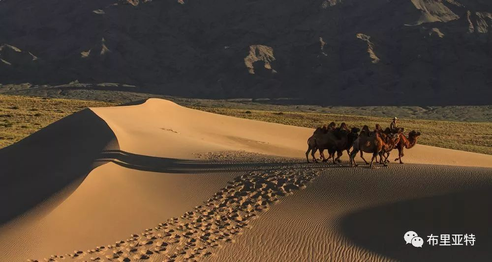 蒙古摄影师巴特扎亚摄影作品欣赏 第45张 蒙古摄影师巴特扎亚摄影作品欣赏 蒙古文化