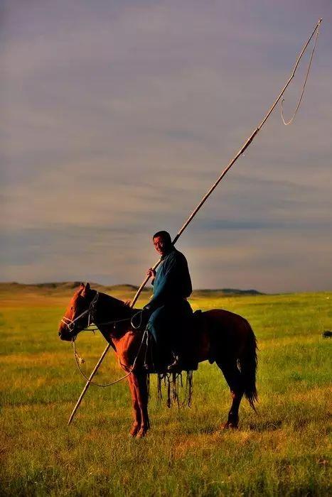 蒙古族狩猎工具——套马杆 第2张 蒙古族狩猎工具——套马杆 蒙古文化