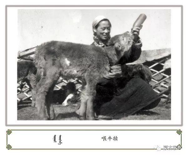 【图片】内蒙古老照片,非常珍贵! 第2张