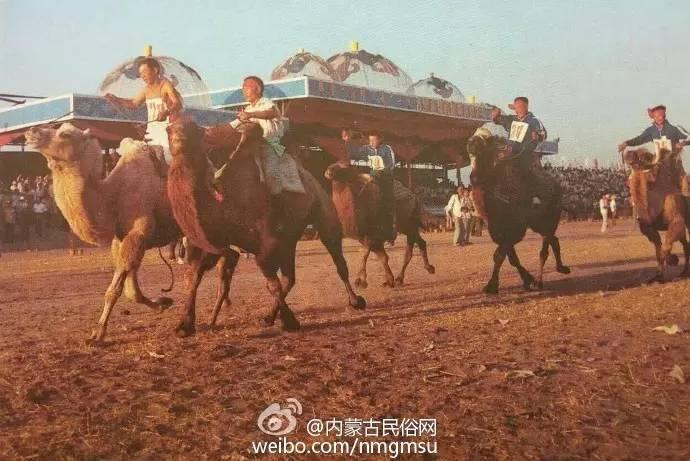 【组图】80年代的内蒙古,致我们的纯真年代! 第6张