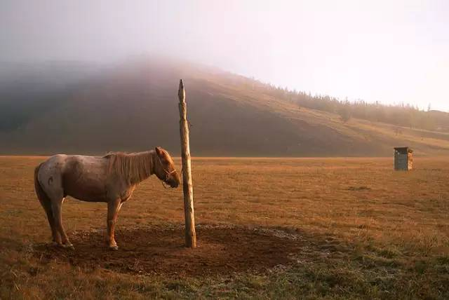 展现内蒙古风情的唯美图片,艺术源自生活 第6张 展现内蒙古风情的唯美图片,艺术源自生活 蒙古文化