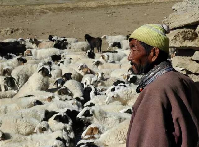 展现内蒙古风情的唯美图片,艺术源自生活 第21张 展现内蒙古风情的唯美图片,艺术源自生活 蒙古文化