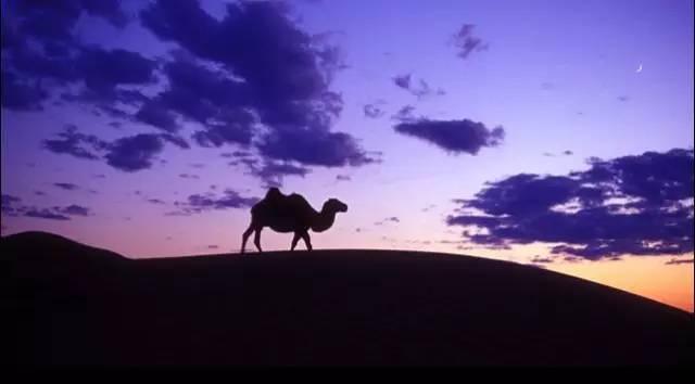展现内蒙古风情的唯美图片,艺术源自生活 第25张 展现内蒙古风情的唯美图片,艺术源自生活 蒙古文化