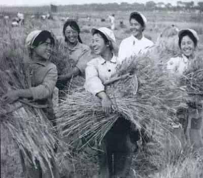【蒙古图片】当年赴内蒙古插队知青,满满的都是回忆(图集) 第37张 【蒙古图片】当年赴内蒙古插队知青,满满的都是回忆(图集) 蒙古文化