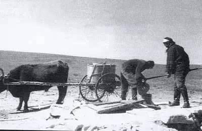 【蒙古图片】当年赴内蒙古插队知青,满满的都是回忆(图集) 第44张 【蒙古图片】当年赴内蒙古插队知青,满满的都是回忆(图集) 蒙古文化