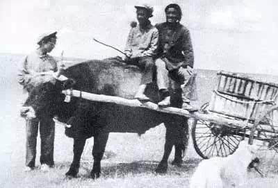 【蒙古图片】当年赴内蒙古插队知青,满满的都是回忆(图集) 第43张 【蒙古图片】当年赴内蒙古插队知青,满满的都是回忆(图集) 蒙古文化