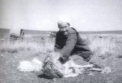 【蒙古图片】当年赴内蒙古插队知青,满满的都是回忆(图集) 第61张 【蒙古图片】当年赴内蒙古插队知青,满满的都是回忆(图集) 蒙古文化