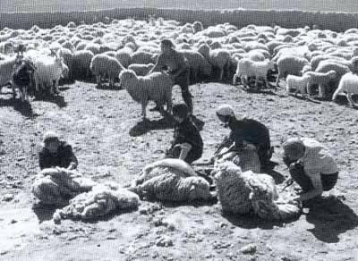 【蒙古图片】当年赴内蒙古插队知青,满满的都是回忆(图集) 第60张 【蒙古图片】当年赴内蒙古插队知青,满满的都是回忆(图集) 蒙古文化