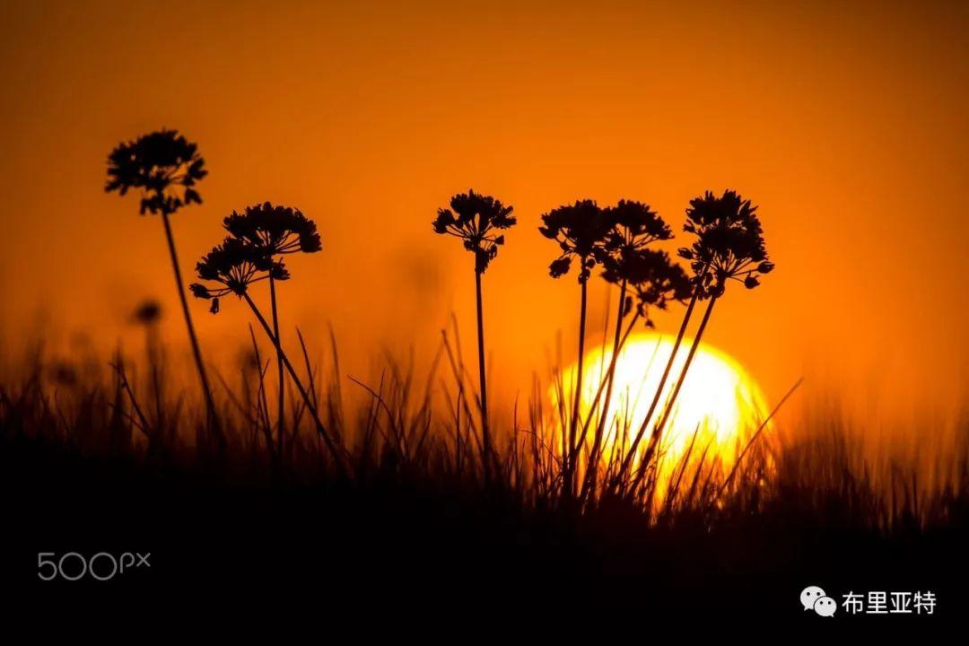 旅行摄影师甘乌力吉的摄影作品欣赏,太震撼! 第4张 旅行摄影师甘乌力吉的摄影作品欣赏,太震撼! 蒙古文化