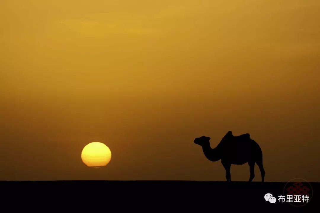 旅行摄影师甘乌力吉的摄影作品欣赏,太震撼! 第7张 旅行摄影师甘乌力吉的摄影作品欣赏,太震撼! 蒙古文化