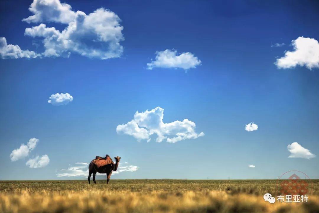 旅行摄影师甘乌力吉的摄影作品欣赏,太震撼! 第6张 旅行摄影师甘乌力吉的摄影作品欣赏,太震撼! 蒙古文化