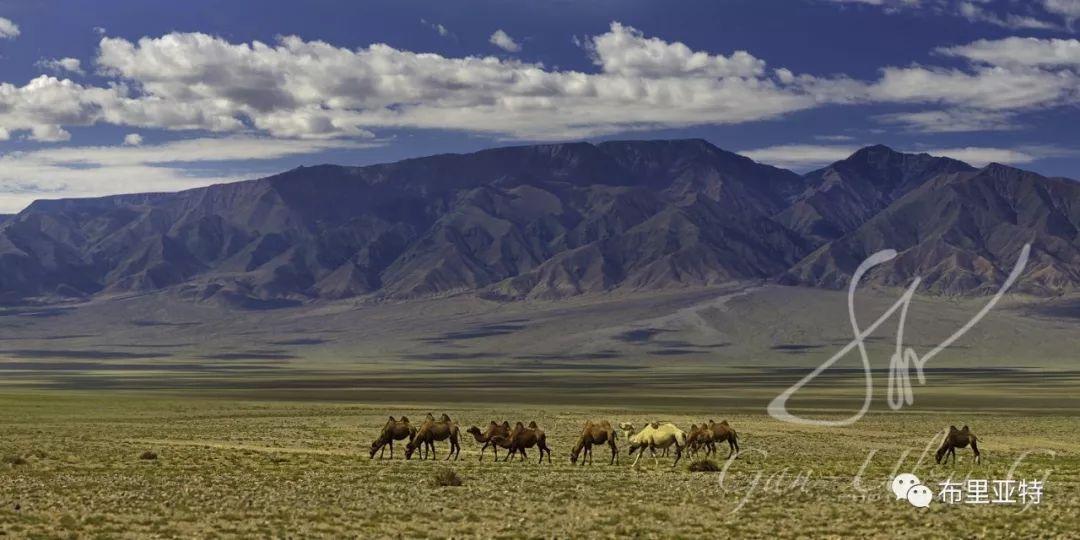 旅行摄影师甘乌力吉的摄影作品欣赏,太震撼! 第12张 旅行摄影师甘乌力吉的摄影作品欣赏,太震撼! 蒙古文化