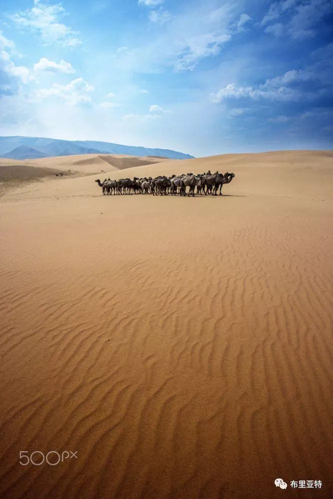 旅行摄影师甘乌力吉的摄影作品欣赏,太震撼! 第19张 旅行摄影师甘乌力吉的摄影作品欣赏,太震撼! 蒙古文化