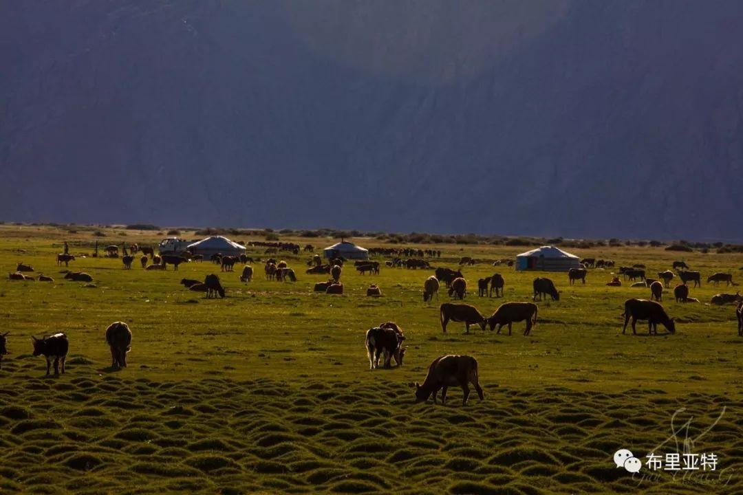 旅行摄影师甘乌力吉的摄影作品欣赏,太震撼! 第25张 旅行摄影师甘乌力吉的摄影作品欣赏,太震撼! 蒙古文化