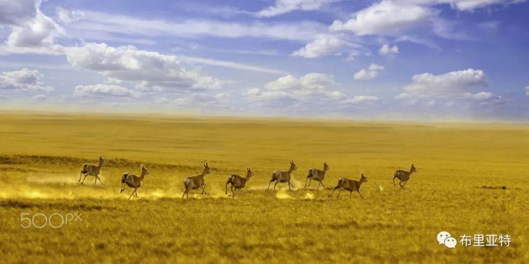 旅行摄影师甘乌力吉的摄影作品欣赏,太震撼! 第38张 旅行摄影师甘乌力吉的摄影作品欣赏,太震撼! 蒙古文化