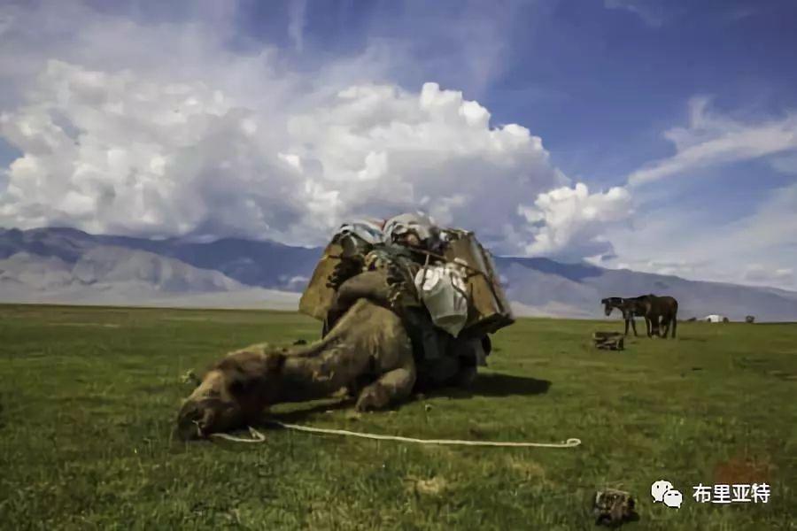 旅行摄影师甘乌力吉的摄影作品欣赏,太震撼! 第65张 旅行摄影师甘乌力吉的摄影作品欣赏,太震撼! 蒙古文化