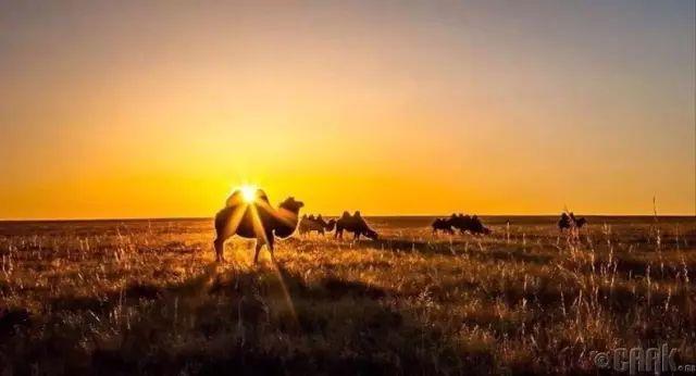 一个神话般的国度,一个安静的地方,我们叫它蒙古 第25张