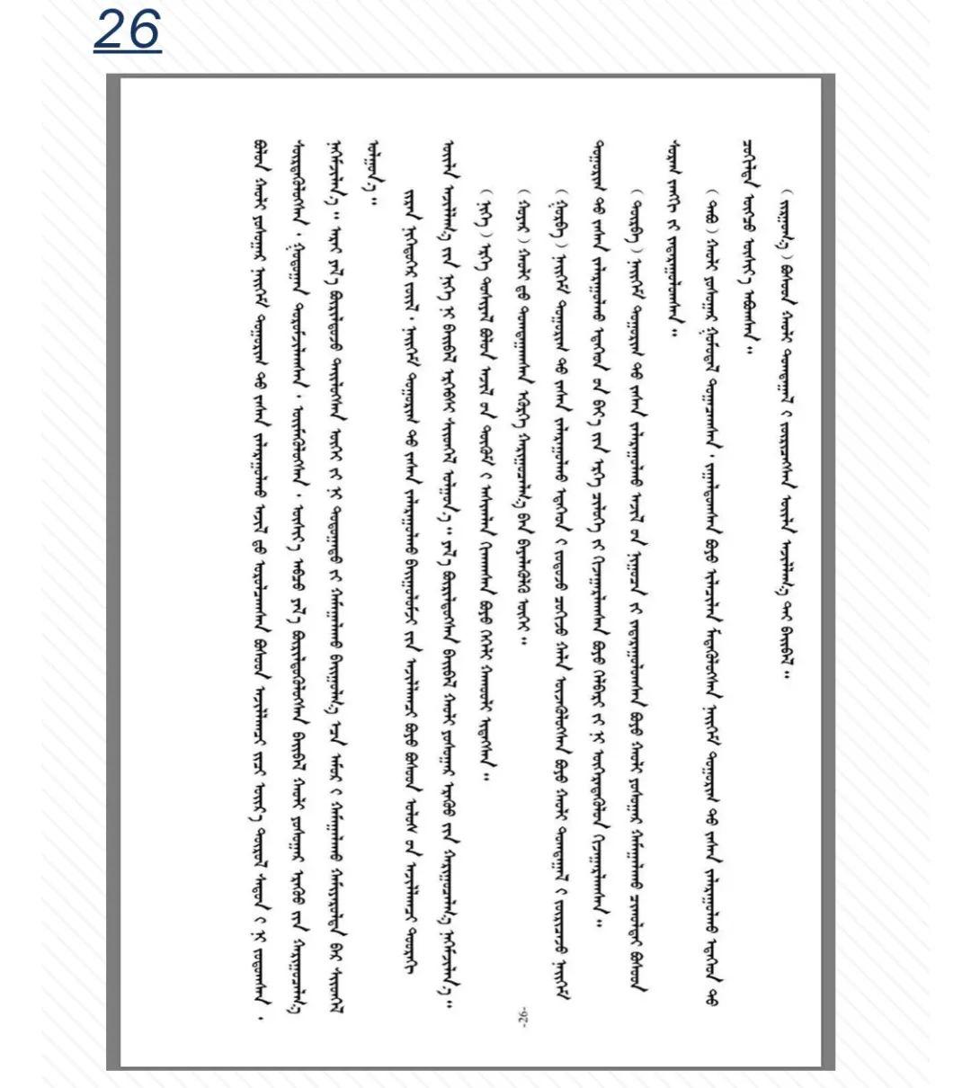 《中华人民共和国社区矫正法(蒙古文版)》问世 第30张