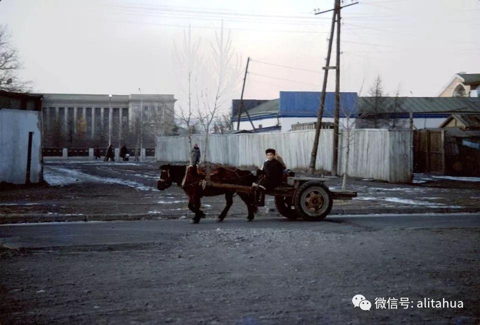【蒙古图片】珍贵资料 蒙古国1976 第10张