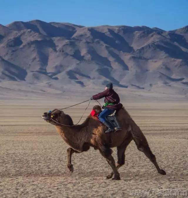 【蒙古影像】100张蒙古图片 记录最真实的蒙古 第19张