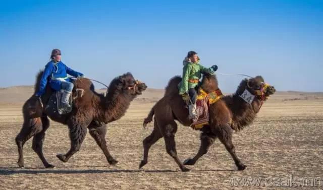 【蒙古影像】100张蒙古图片 记录最真实的蒙古 第18张
