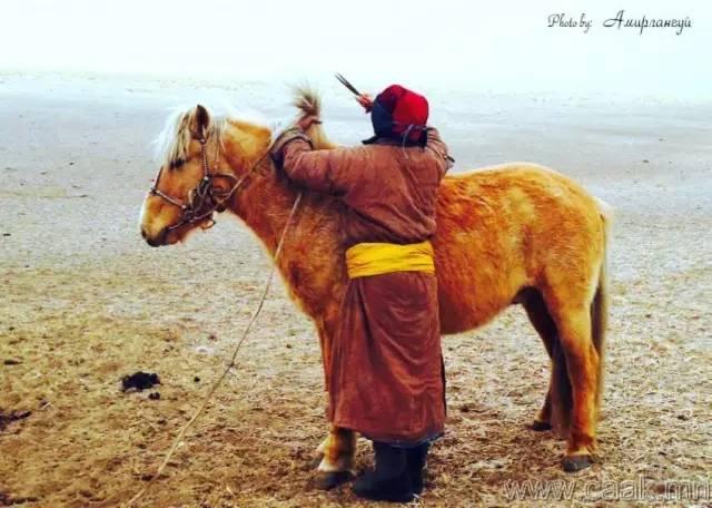【蒙古影像】100张蒙古图片 记录最真实的蒙古 第22张