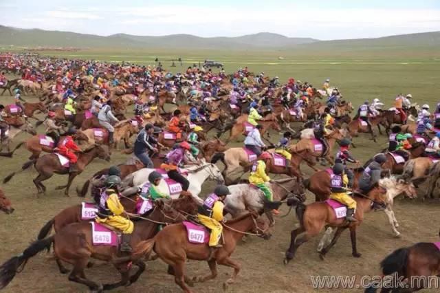 【蒙古影像】100张蒙古图片 记录最真实的蒙古 第44张