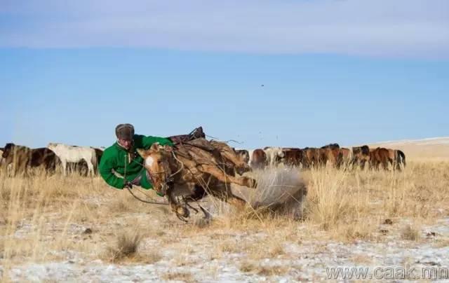 【蒙古影像】100张蒙古图片 记录最真实的蒙古 第85张