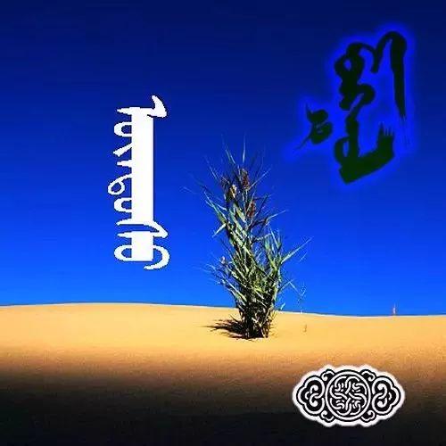 666张蒙古微信头像 你一定会喜欢 第14张 666张蒙古微信头像 你一定会喜欢 蒙古文化