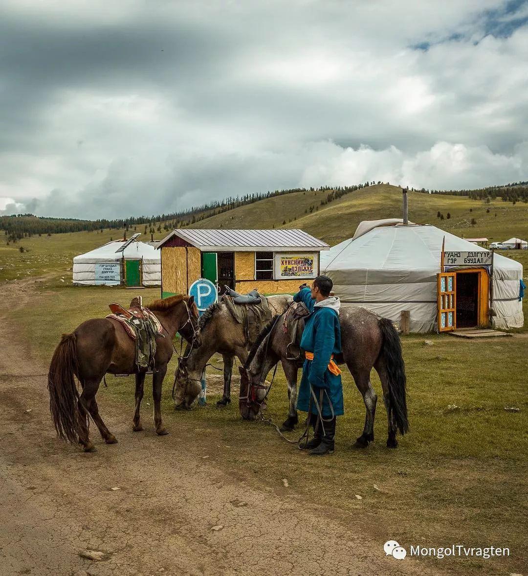 蒙古影像-- Henne Metz 第12张