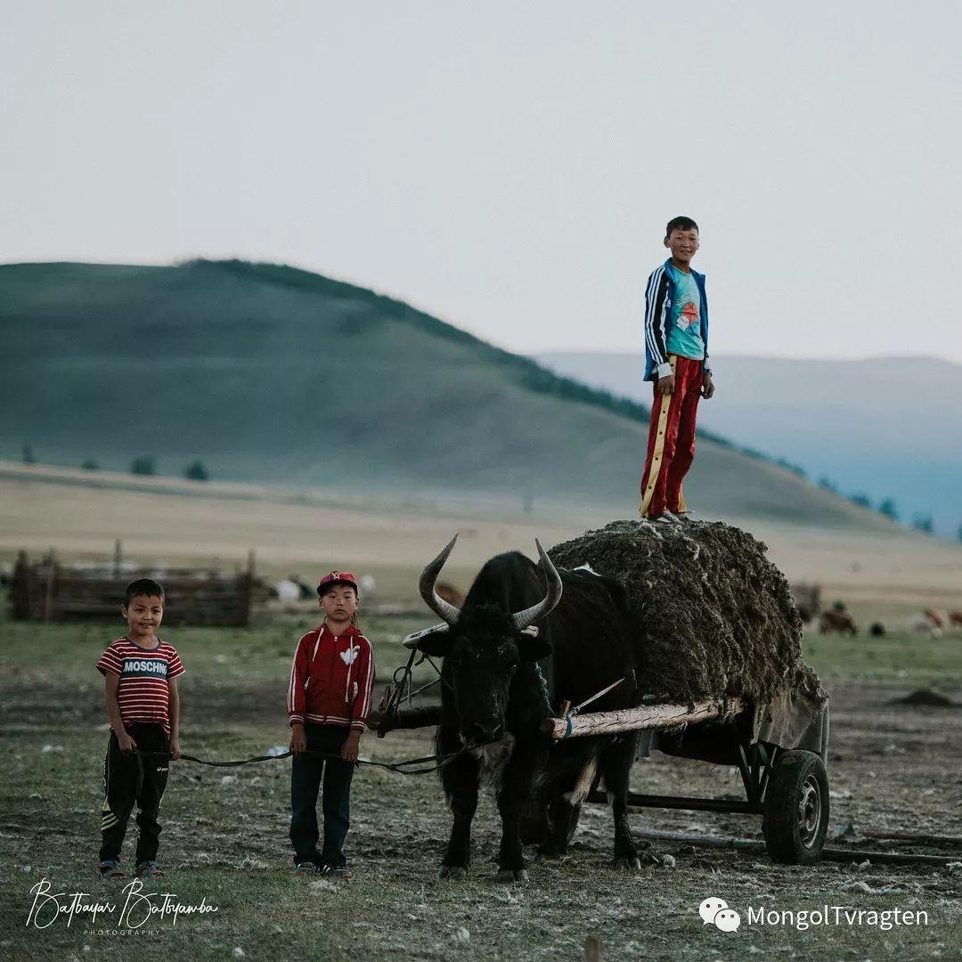 蒙古影像-bat.byamba 一场震撼力极强的视觉盛宴…… 第5张