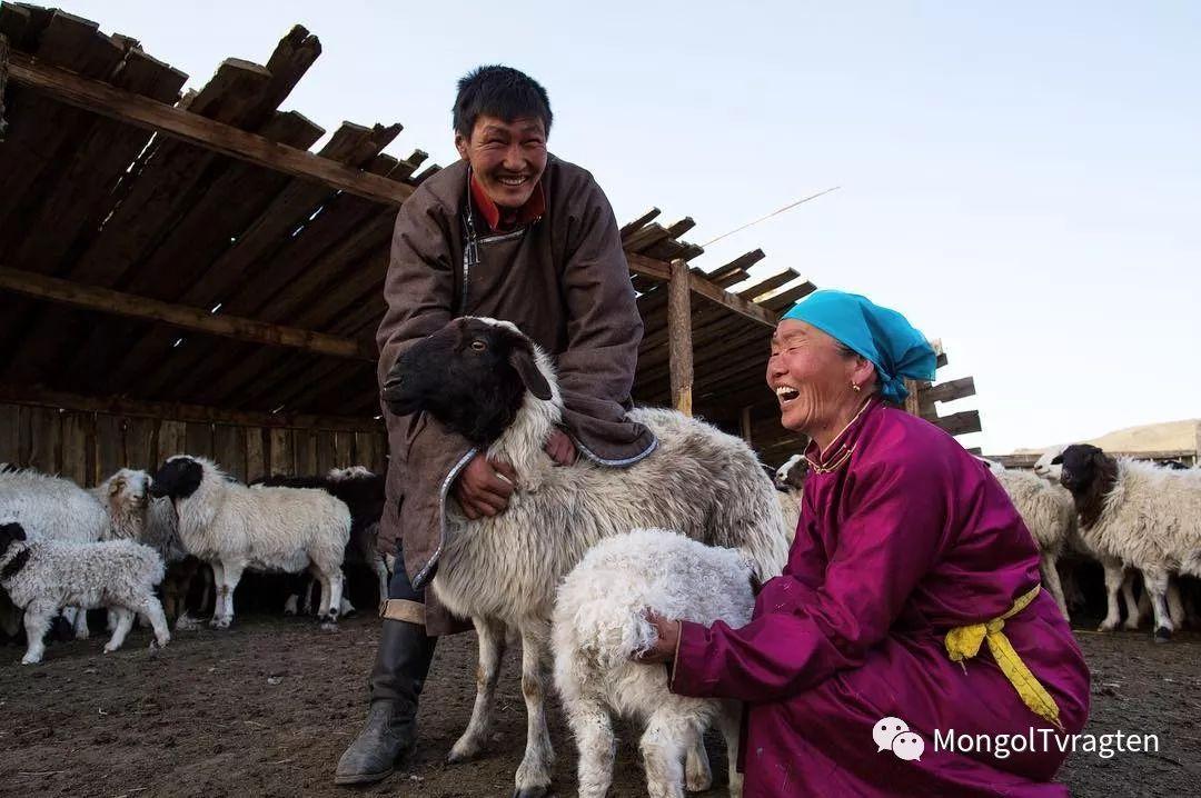 蒙古影像-- khangaikhuu.P 第11张