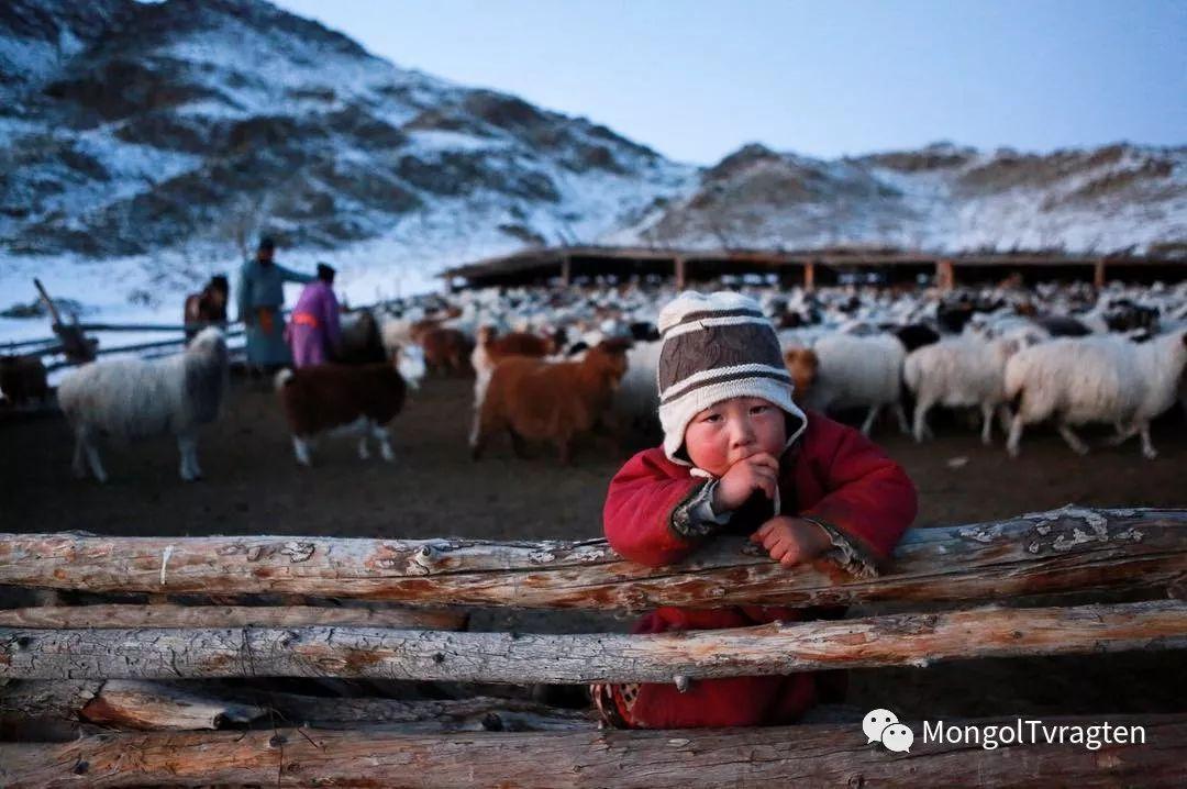 蒙古影像-- khangaikhuu.P 第14张