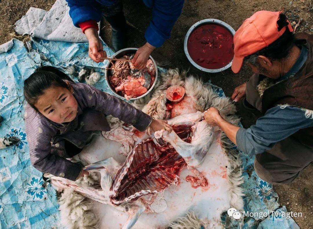 蒙古影像-- khangaikhuu.P 第18张