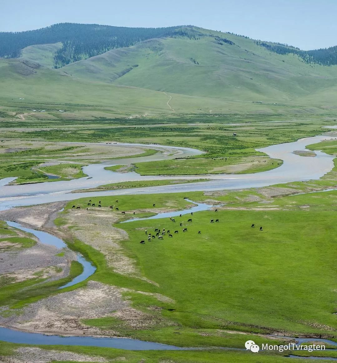 蒙古影像-Robert Michael Poole 第11张