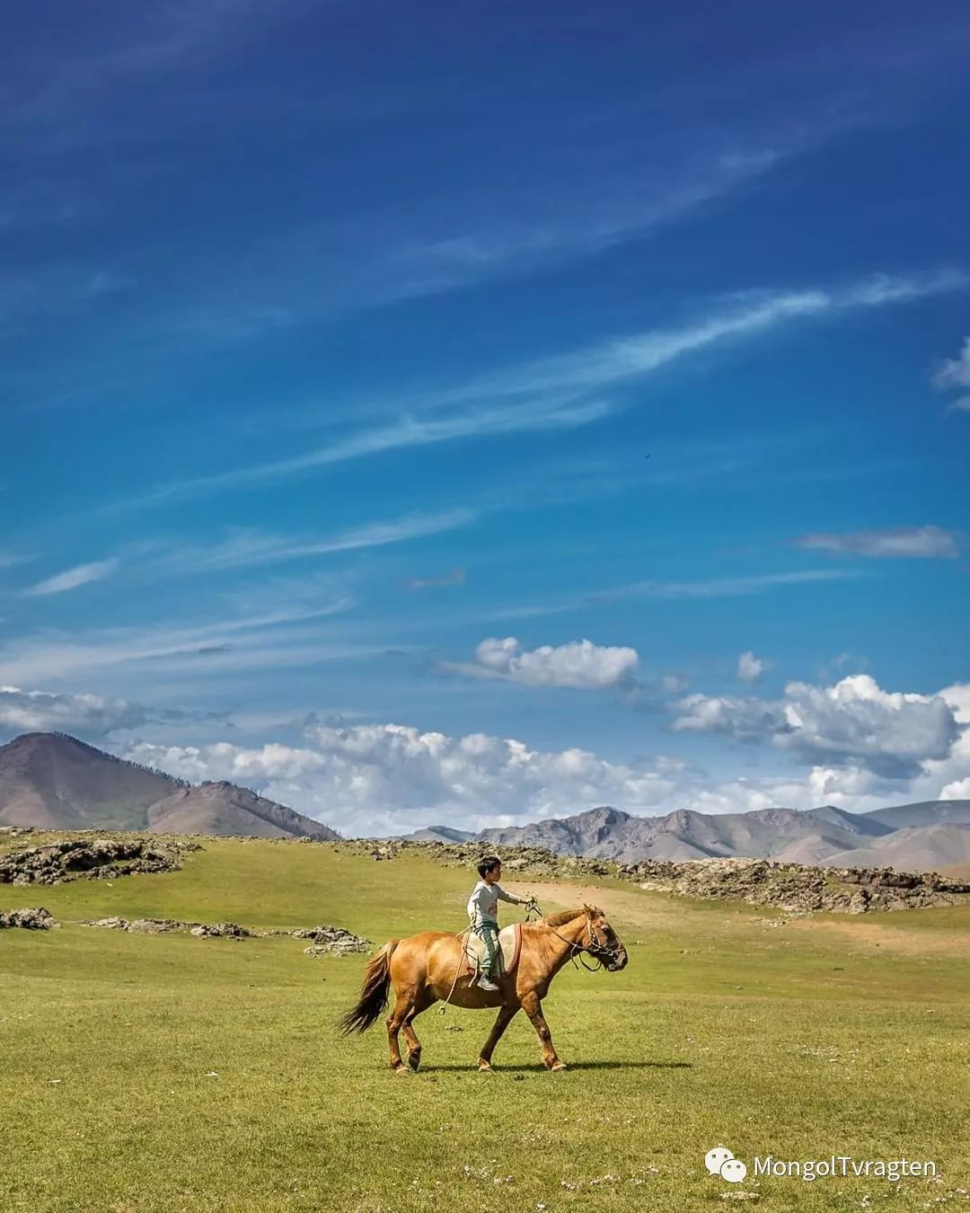 蒙古影像-- Henne Metz 第15张 蒙古影像-- Henne Metz 蒙古文化